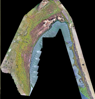Drone-vegetation-mapping-7