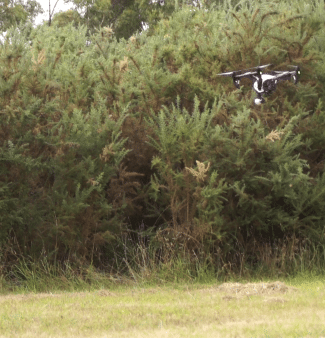 Drone-weed-mapping-7